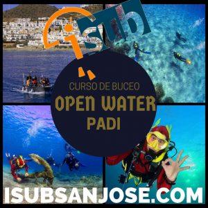 Dorado Azul Marino Pub Collage Instagram Publicacion 300x300 - Curso de buceo PADI open water